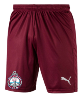 2020-21 Adult Away Shorts (Size: Large)