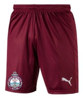 2020-21 Junior Away Shorts (Size: 7-8y)